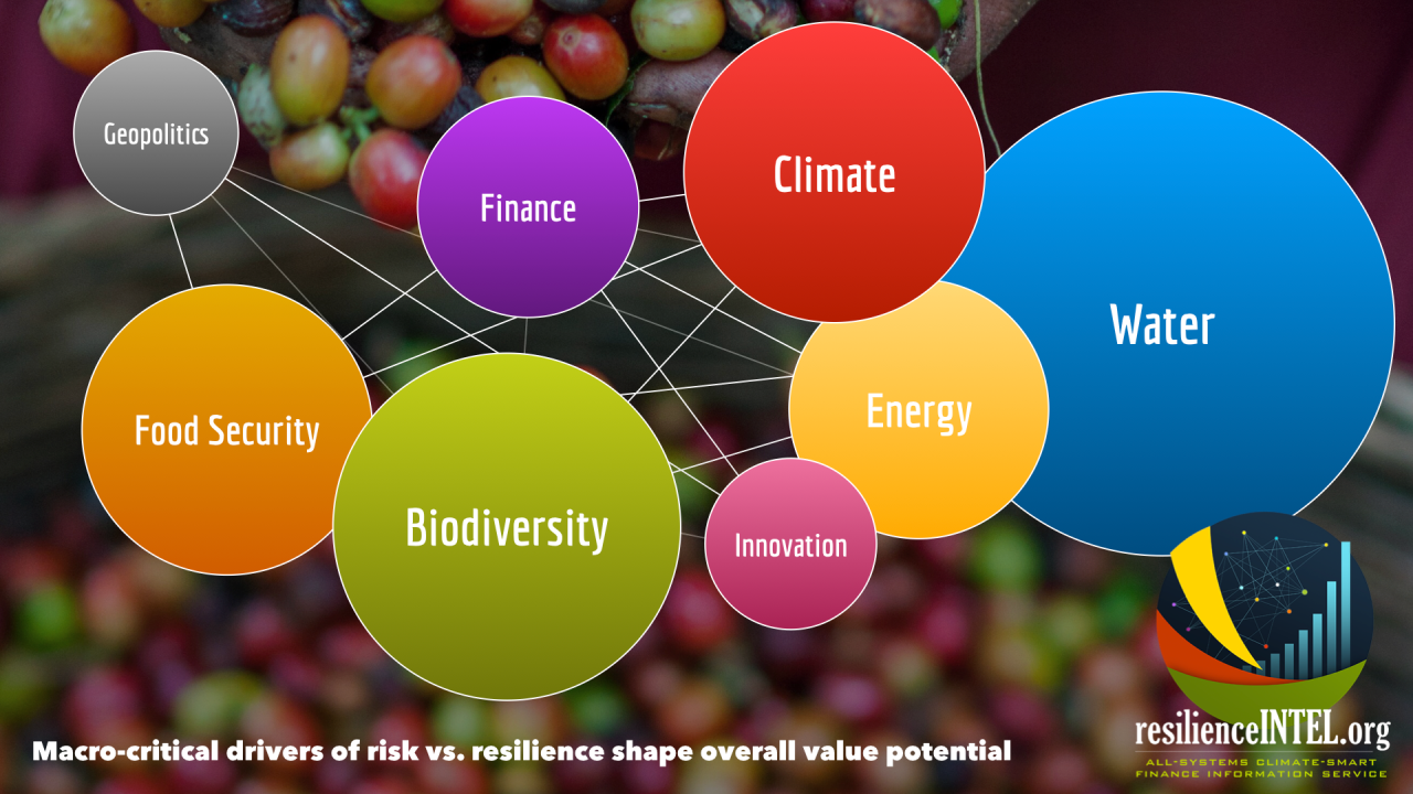 Interactive Risk Tracking to Finance Resilient Prosperity